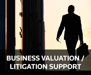 Business Valuation / Litigation Support