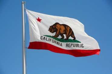 california-flag-bear