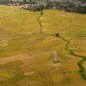 Aerial view of rice paddy field in Vietnam's northwest historic city of Dien Bien Phu May 25, 2011. The Dien Bien Phu siege lasted for 56 days during 1954 and is considered one of the great battles of the 20th century. The French defeat led to the signing of the Geneva Accords on July 21, 1954. REUTERS/Kham (VIETNAM - Tags: AGRICULTURE TRAVEL)