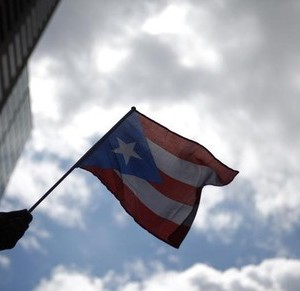 A participant holds a flag during Puerto Rican Day Parade in New York June 14, 2009. REUTERS/Eric Thayer