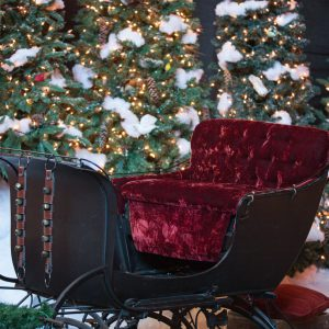An antique sleigh with sleigh bells and Christmas trees