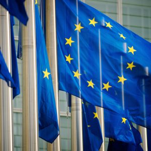 EU and the Possible Application of a Generalised Reverse Charge Mechanism